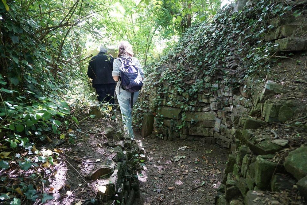 wandeling-ecologische-tuin-juni-2015